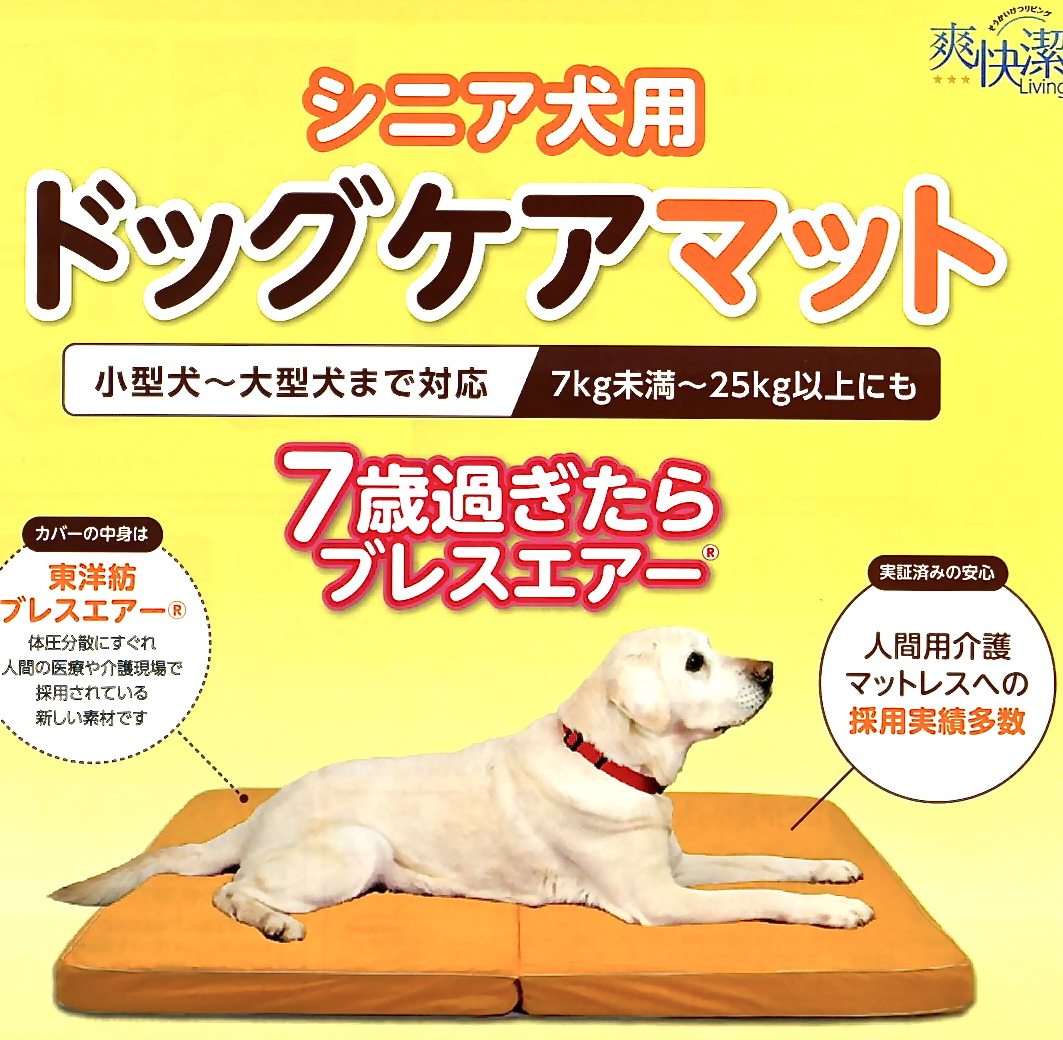 介護商品の紹介:老犬介護用の「ドッグケアマット」